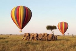 hot air ballon african safai