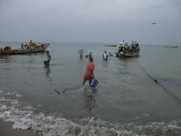 gambia fishing