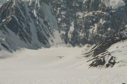 ski alaska