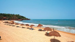 reasons to visit goa