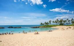 dont be alone at christmas hawaii