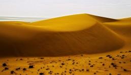sand-dunes mui ne vietnam