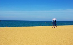 reasons to visit gambia