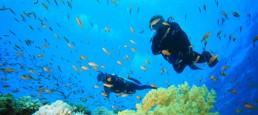 cape verde sal scuba diving