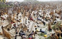 Argungun Fishing Festival nieria
