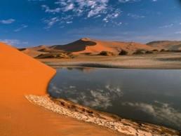 tunisia Desert Oases