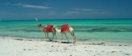 tunisia beaches