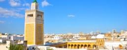 Tunis Panorama