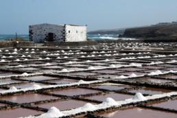 Salt Museum in Fuerteventura
