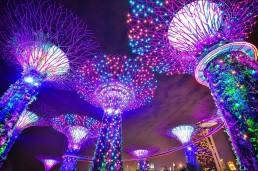 guide to singapore gardens