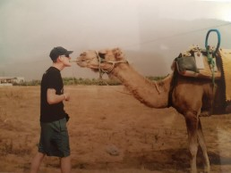 camel kissing
